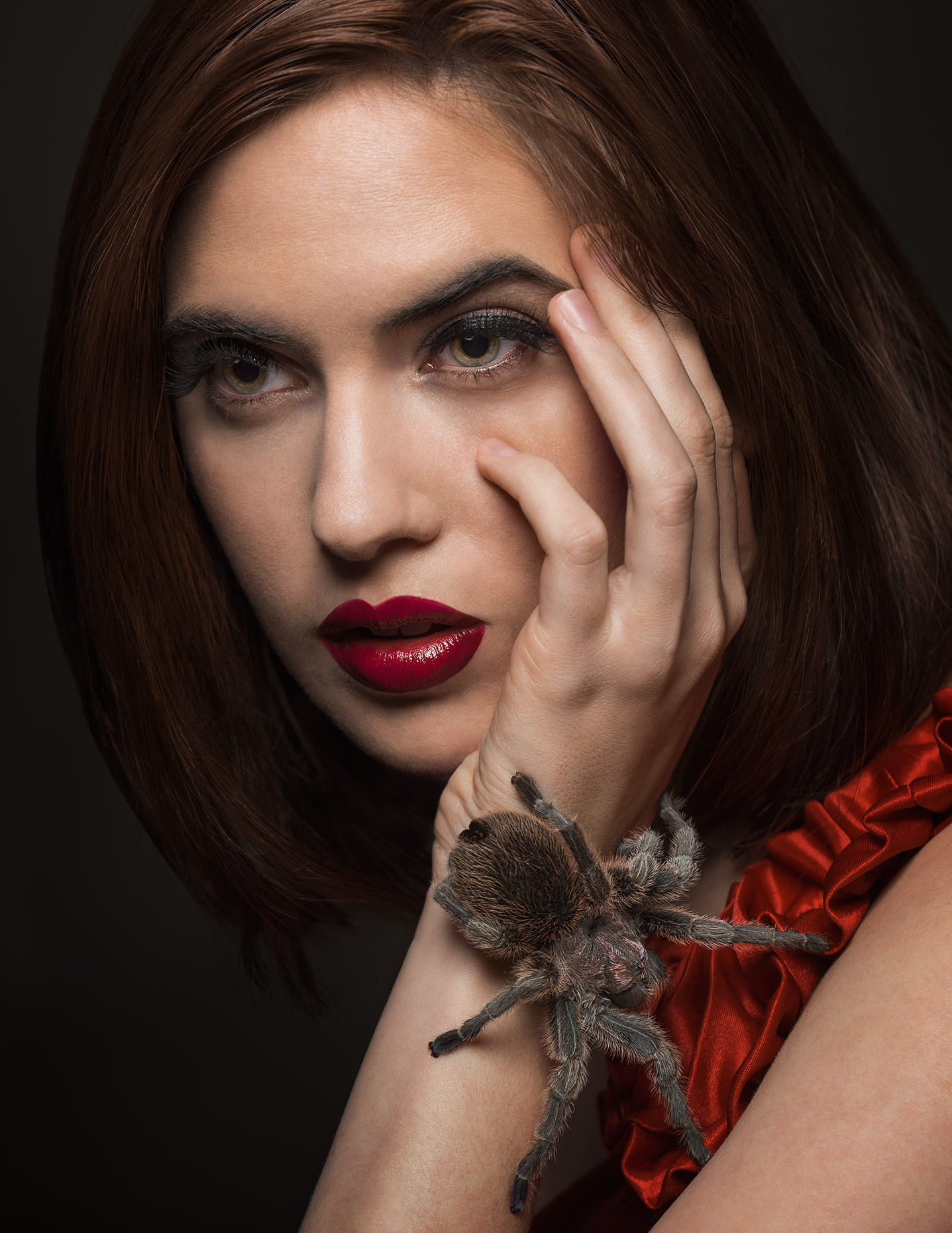 elle_spider_closeup